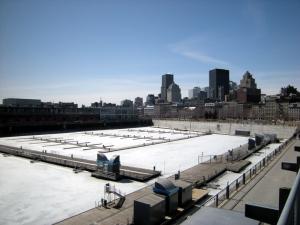Le bassin et le profil de Montréal