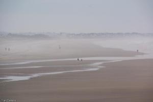 la plage presque désertée