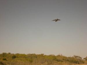Des avions décolent de l\'aéroport tout près.