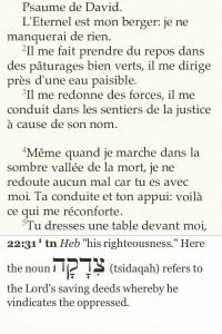 BibleReader sur iOs